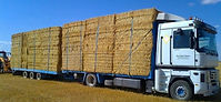 441630-camion_remolque-renault-caja_abie
