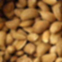 Amendoa