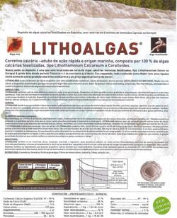 LITHOALGAS1