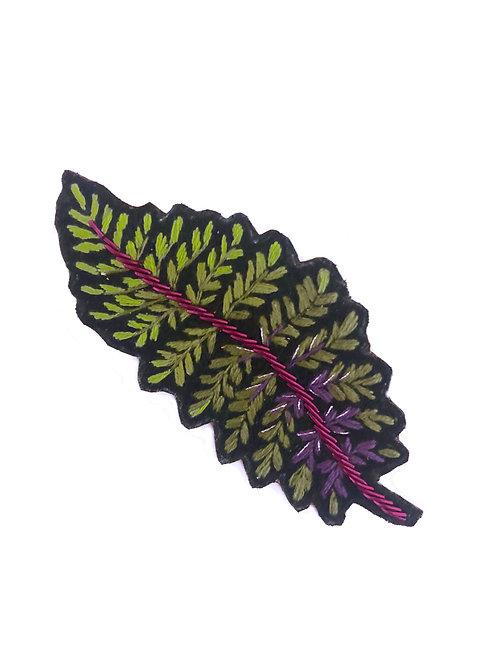 Fougère japonaise Athyrium niponicum
