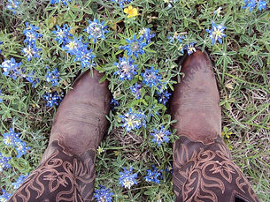 Spring in Round Top Texas