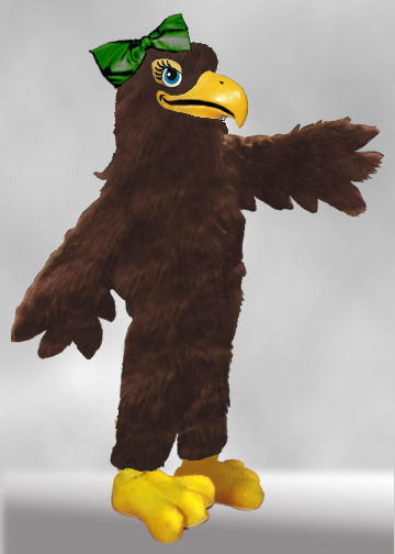 Facemakers falcon Mascot Costumes