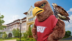 Rocky the Red Hawk mascot at Montclair State by Facemakers mascots