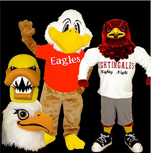 eagle and falcon mascot costumes
