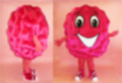 Facemakers Raspberry Mascot Costumes