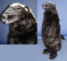 Facemakers Badger Mascot Costumes