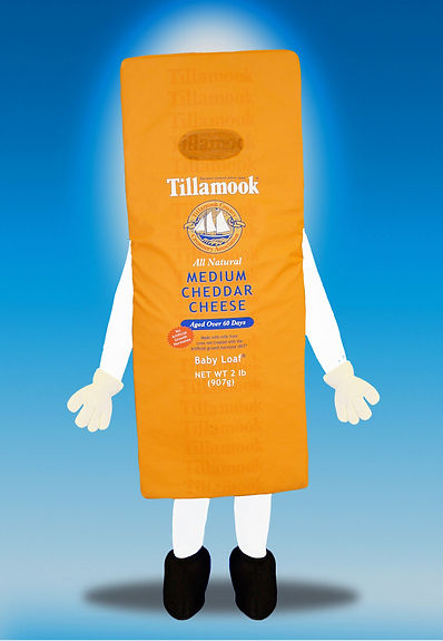 Facemakers Cheese Mascot Costumes