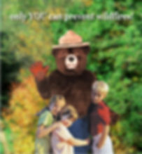 Facemakers Smokey Bear costumes