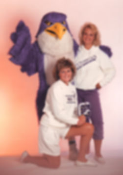 Facemakers Hawk Mascot Costumes