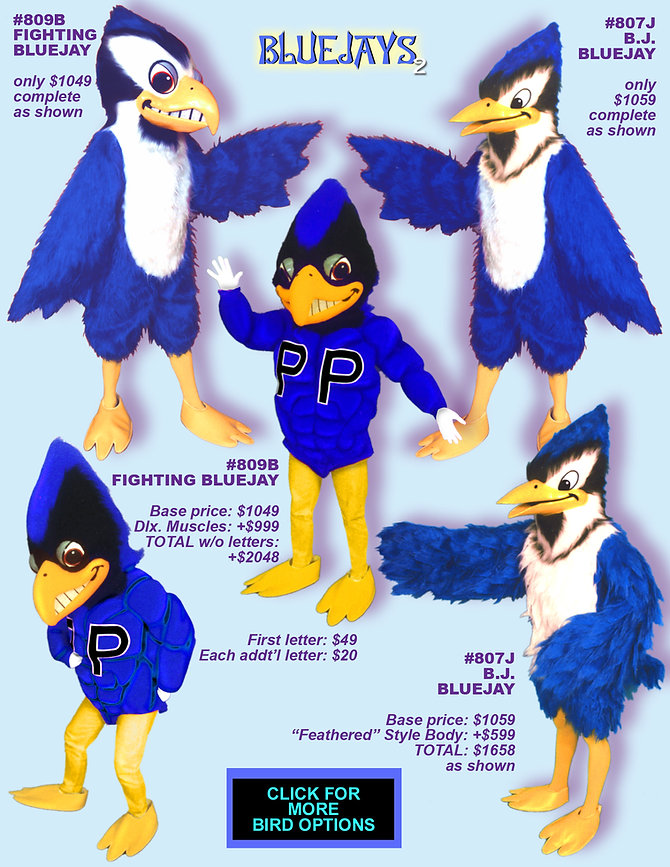 Facemakers Bluejay Mascot Costumes
