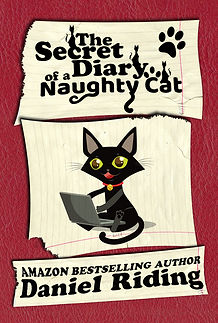 naughty cat ebook.jpg