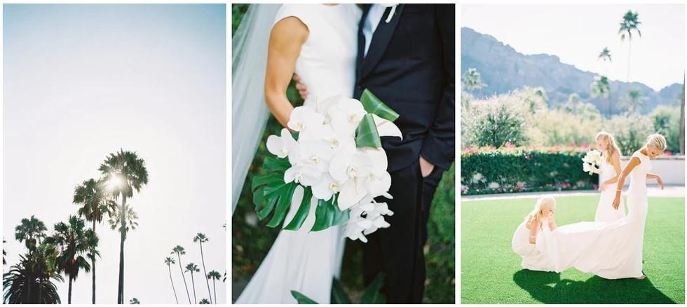 montelucia wedding paradise valley weddi