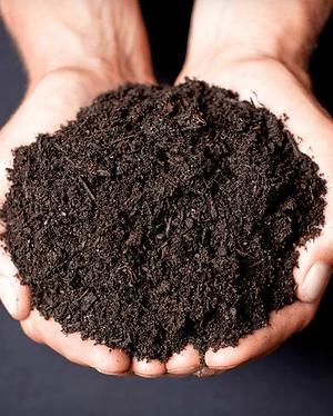 Black-Garden-Soil.png