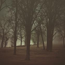 Mississippi River fog at Memphis