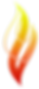 FIRE-SE Logo icon