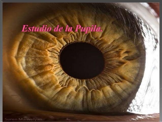 Pupilografía