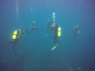 group-of-divers-1jpg