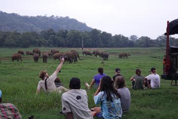 sri-lankan-wildlife-jpg