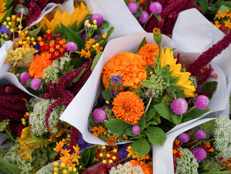 Discover Wonder through Flowers