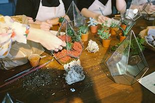 Atelier terrarium à Nantes avec des plantes grasses, succulentes