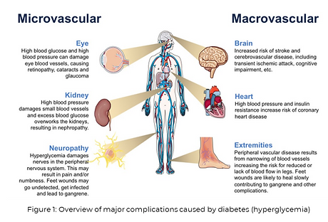 microvascular_macrovascular.PNG