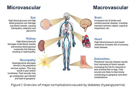 microvascular_macrovascular.PNG