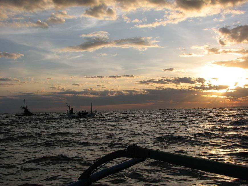 Dolphin trip, Lovina