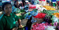 offering flowers, traditional market