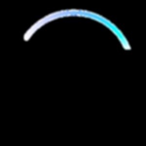 TP Plus Logo.png