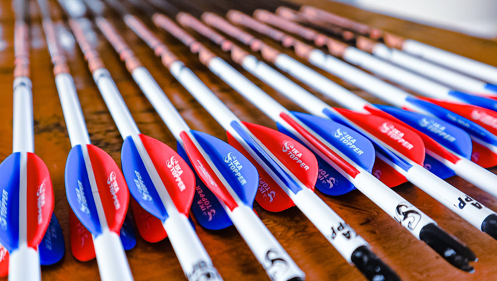 4 Fletch Custom arrows Price per 12