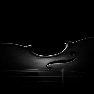 Violin side BW.jpg