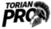 TORIAN_PRO.png
