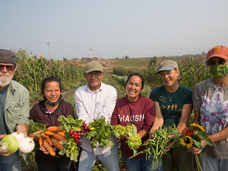 Eating Locally, Thinking Globally
