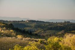 golf Taliansko Toskansko