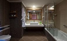 Standart Bathroom.jpg