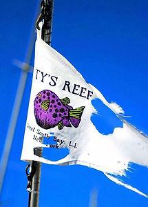 Tys Reef.jpg