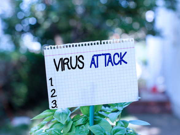 Text sign showing Virus Attack. Conceptu