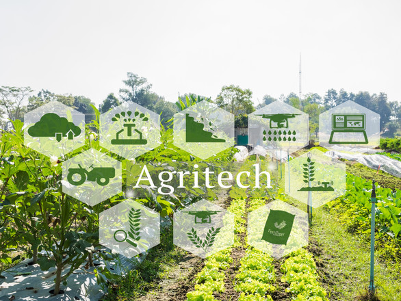 Organic Farming and Agritech concept. Ag