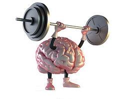 brain muscle.jpg