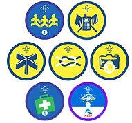 Activity Badges.png