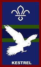 Kestrel - new logo.jpg