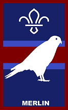 merlin - new logo.png