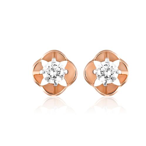 Mini Hoops Gold Earrings