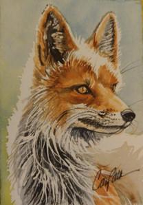 Russian Fox
