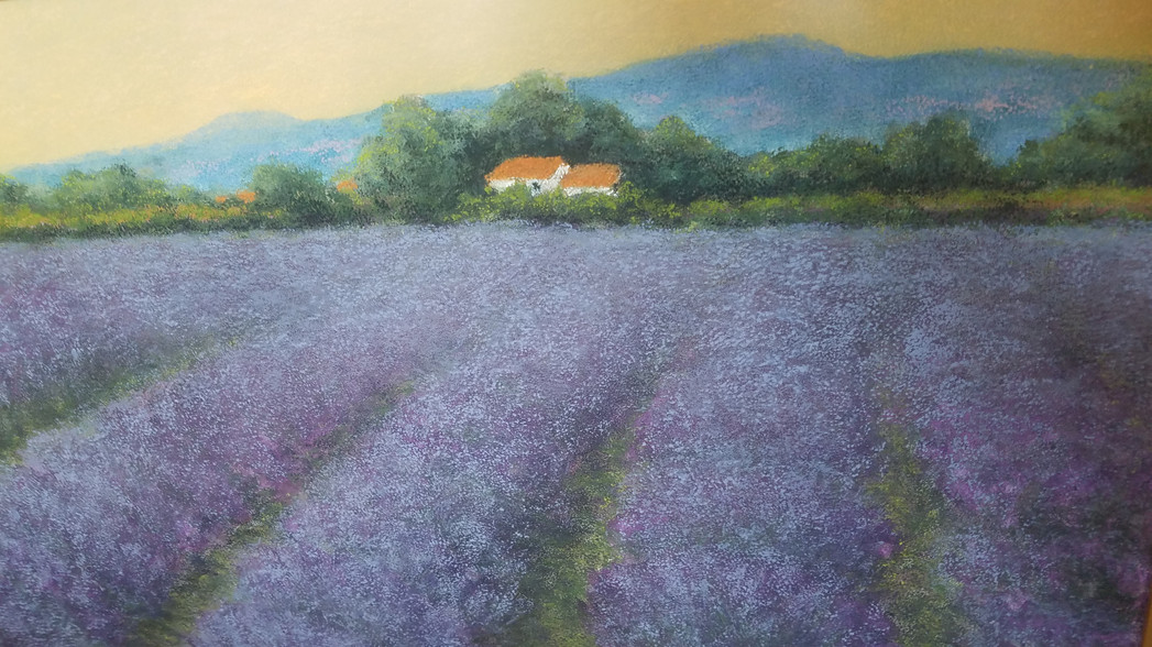 Sun Setting on Lavender Fields in Provence