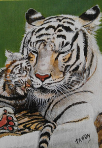 Hugs with Tigers