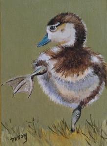 Dancing Feet Duckling