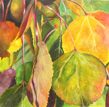 Marion_ Autumn Aspens_ Watercolor.JPG