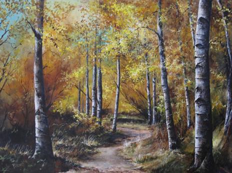 new aspen path