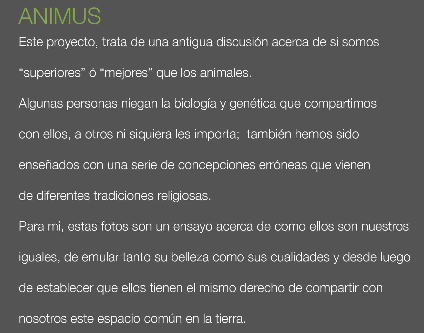 ANIMUS  S